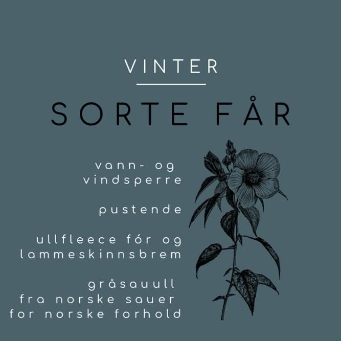 Bilde av SORTE FÅR VINTER (38/42)